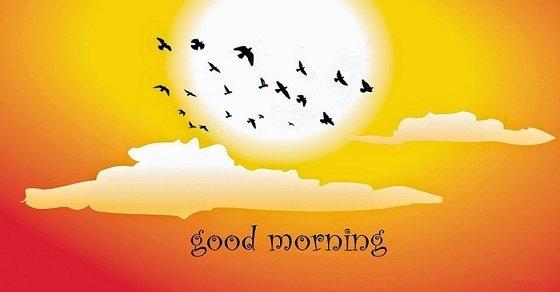 Những lời chúc ngày mới hay nhất, ý nghĩa nhất