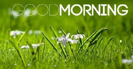 Những câu chúc buổi sáng hay cho người yêu