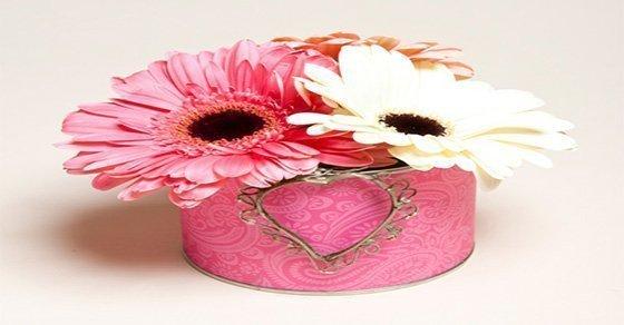 Cách cắm các loại hoa đồng tiền, hoa hướng dương..