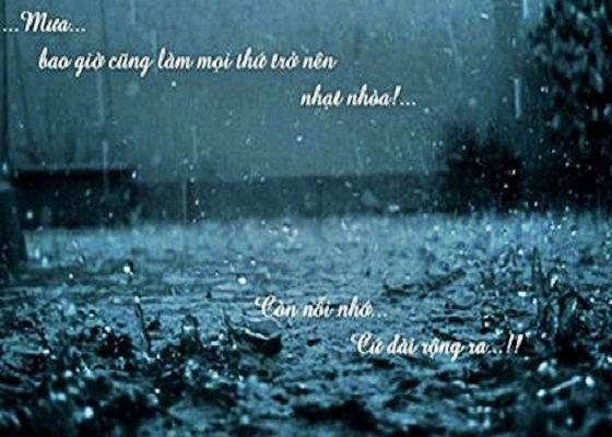 Những stt buồn cho ngày mưa hay nhất
