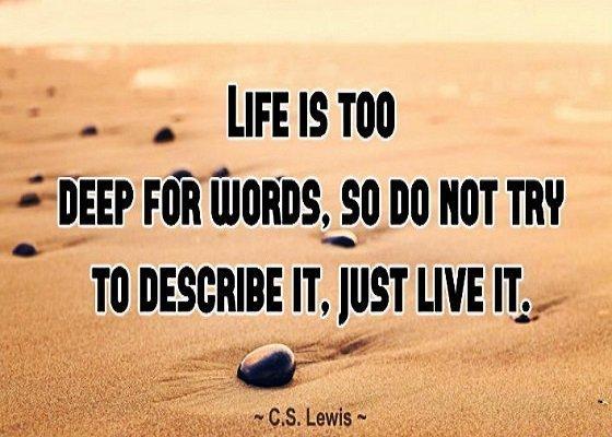 Stt cực chất về đời bạn không nên bỏ qua