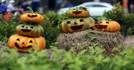 """""""Linh vật"""" của Halloween được chế tác"""
