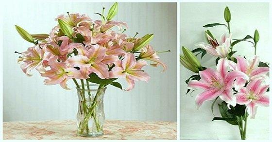 Bình hoa được cắm theo kiểu cổ điển