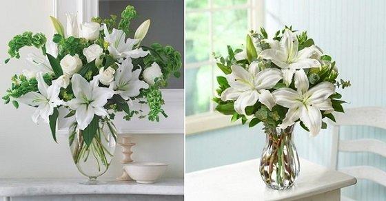 Những bông hoa được đặt lồng vào lọ thủy tinh