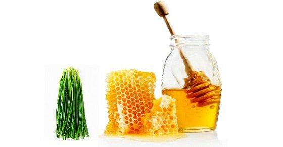 Cách trị đau họng ở trẻ em bằng mật ong và lá hẹ