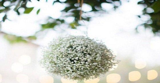 Những quả cầu bằng hoa là điểm nhấn cho sân khấu bạn