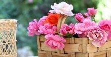 Cách cắm hoa hồng để bàn đẹp và đơn giản
