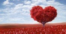 Danh ngôn tiếng anh về tình yêu hay và ý nghĩa nhất