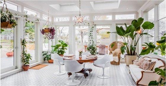 Những chậu cây cảnh giúp ngôi nhà mới được trang hoàng hơn