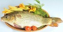 Cá chép giòn làm món gì ngon - Món ngon từ cá chép