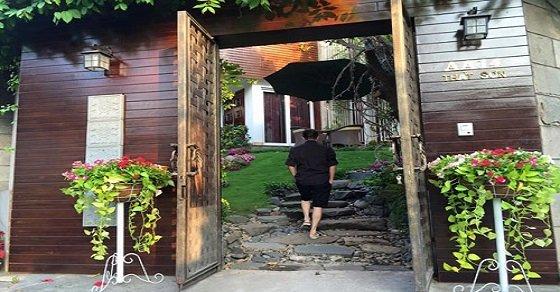 Những chậu cây khiến cổng nhà bạn mềm mại hơn