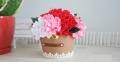 Cách cắm hoa cẩm chướng đẹp để bàn tươi lâu