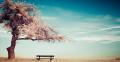 Những câu nói hay và ý nghĩa nhất khi thất tình