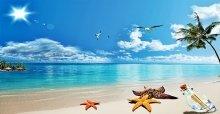 Tuyển tập những stt hay về bãi biển ý nghĩa