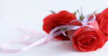 Ý nghĩa của hoa hồng đỏ và hoa đồng đen thú vị có thể bạn chưa biết