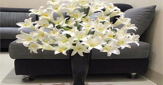 Những mẫu cắm hoa loa kèn