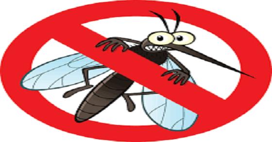 Cách điều trị bệnh sốt rét tại nhà