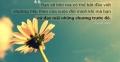Những câu nói hay truyền cảm hứng mạnh mẽ cho giới trẻ